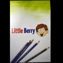 Little Berry skicár